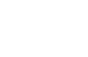 Elite Dog Groomers